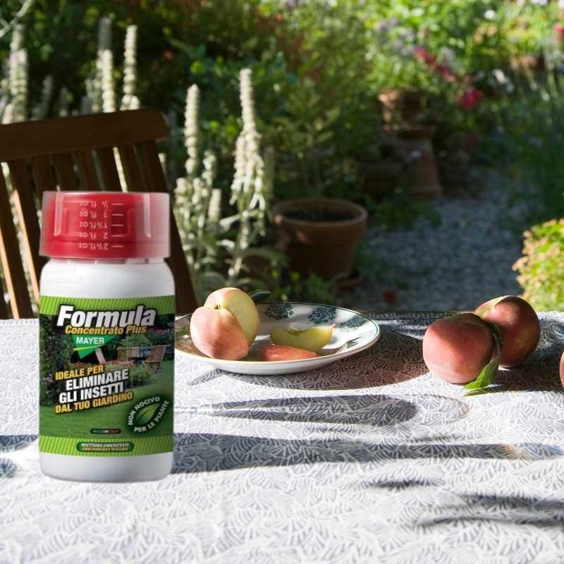 eliminare le zanzare e gli insetti (1)